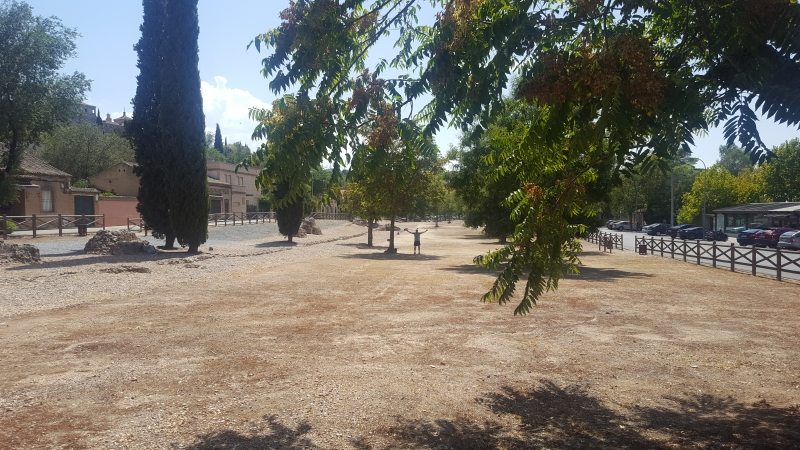 This is the track at the Roman circus in Toledo. You can just about make me out in the middle distance by the tree. The middle of the track is on the left (from your view).