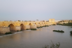 Roman bridge (Cordoba)